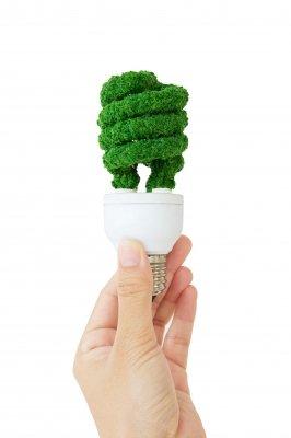 "Image courtesy of Ponsulak / FreeDigitalPhotos.net""Eco Energy Concept"""