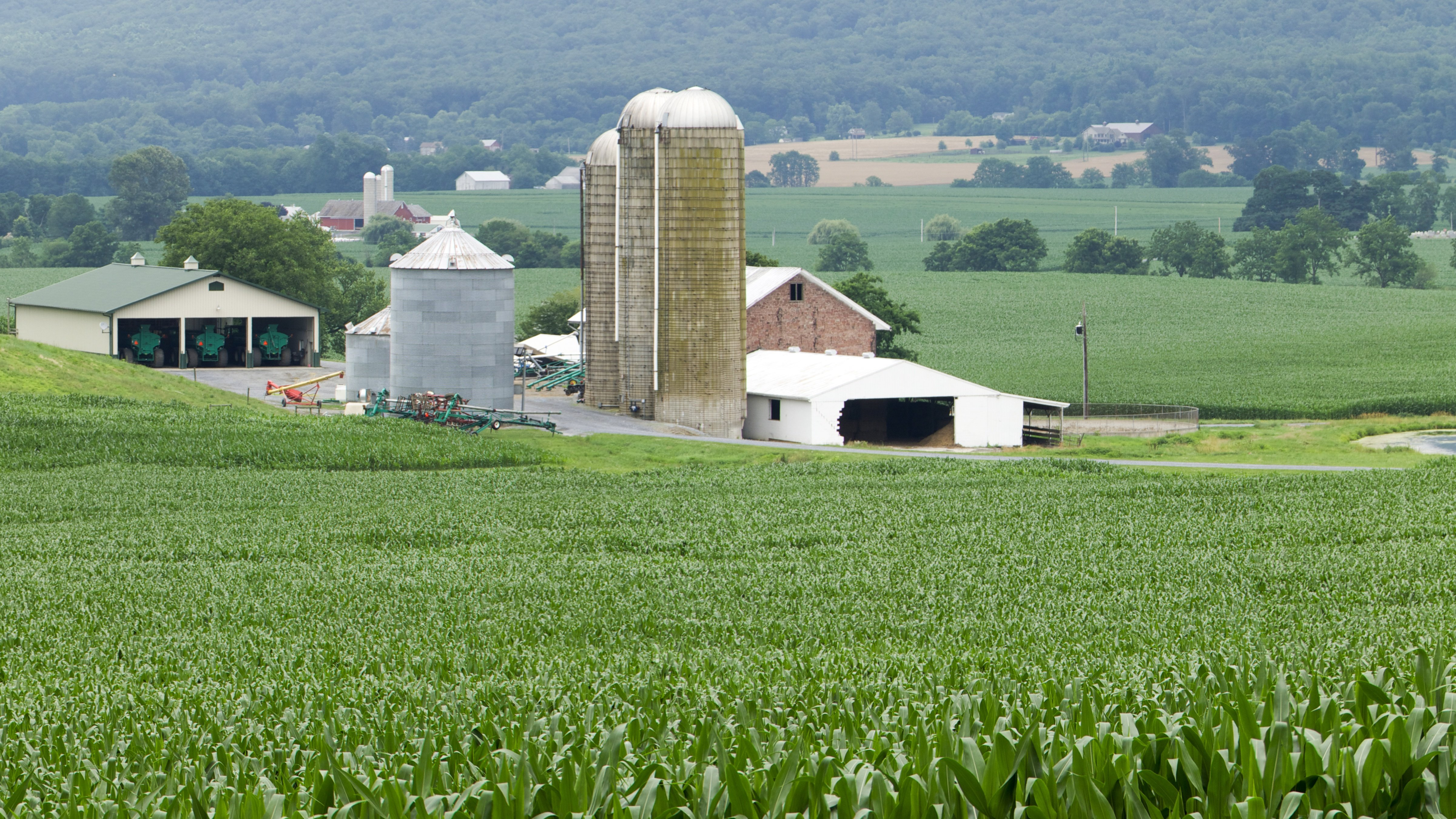 photo How to Invest in Agricultural Real Estate in Illinois